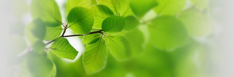 Экологически чистое гальваническое производство